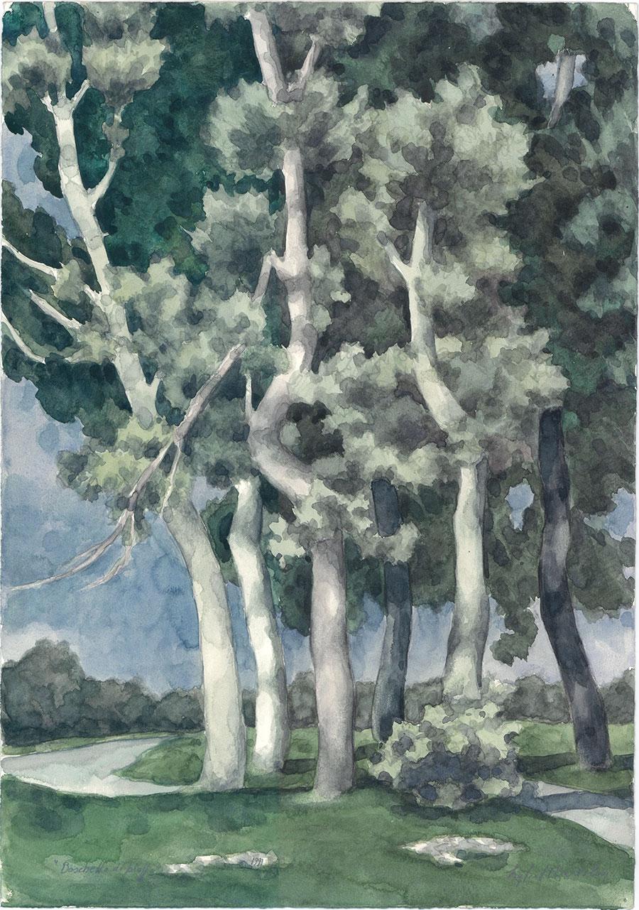 Boschetto di pioppi, 1991
