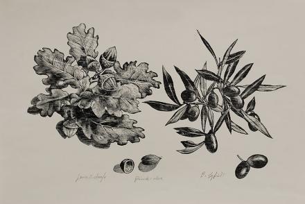 Ghiande e olive, 1997